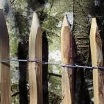 Der Staketenzaun - ein Highlight für den Garten